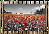Wallario Garten-Poster Outdoor-Poster - Mohnblumenfeld- rote Blumen in schwarz-weiß Fotografie in Premiumqualität, Größe: 61 x 91,5 cm, für den Außeneinsatz geeignet