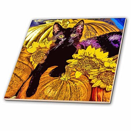 loween-Katze aus Keramik, 15,2 cm ()