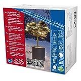 Konstsmide 6622-117 Micro LED Lichterkette / für Außen (IP67) /  schutzisoliert/umgossen / mit Dimmer / 120 warm weiße Dioden / schwarzes Softkabel