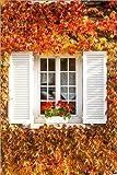 Posterlounge Acrylglasbild 120 x 180 cm: Fenster mit Herbstlaub von Matteo Colombo - Wandbild, Acryl Glasbild, Druck auf Acryl Glas Bild