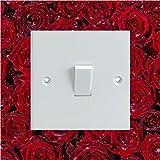 Vinylsticker als Lichtschalter-Umrandung, bedruckt, Design mit feuchten roten Rosenblüten