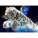 Riou DIY 5D Diamant Painting voll,Stickerei Malerei Diamant Tier-Serie Katze und Tiger Muster Crystal Strass Stickerei Bilder Kunst Handwerk für Home Wall Decor gemälde Kreuzstich (Mehrfarbig C, 40*30CM)
