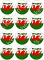Welsh Rugby Cupcke Toppers - Edible Wafer 4cm x 24 by Deb's Kitchen Cakes by Debs Kitchen Cakes