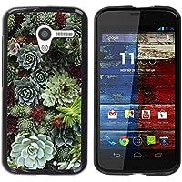 WonderWall Carta Da Parati Immagine Custodia Rigida Protezione Cover Case Per Motorola Moto X 1 1st GEN I XT1058 XT1053 XT1052 XT1056 XT1060 XT1055 - cono albero foresta verde