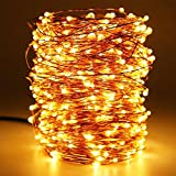 Beauty Lights 20 Meters 200Led Warm White Usb Powered Copper Led Decorative Fairy String Lights