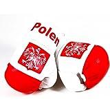 Duftbaum Lufterfrischer Flagge Polen Pamiątka Für Das Auto Geruch Duft Wald Auto