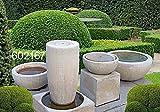 Schale, Vase, Amphore, Pflanzkübel, Stein Farbe sandstein