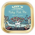 Lily's Kitchen Adult Fishy Fish Pie Wet Dog Food (10 x 150 g)