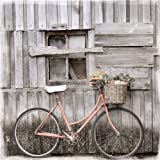 Eurographics EC-DT8002 Eco Chic Vintage Bicicletas de montaña, 50 x 50 cm