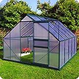 Aluminium Gewächshaus mit Fundament verschiedene Modelle Treibhaus Garten Pflanzenhaus Alu Tomatenhaus (250x310, Grün)