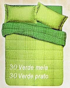 Euronovità Srl Piumone Trapunta Letto Matrimoniale 2 piazze Double Face Verde/Verde Prato copriletto Trapuntato in Microfibra 320 GR/mq, Made in Italy