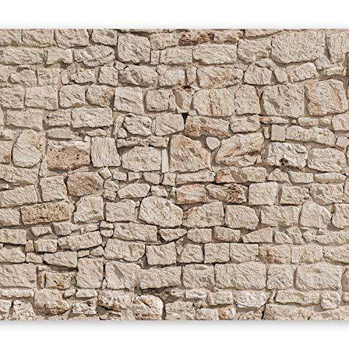 murando - Fototapete Steinoptik 400x280 cm - Vlies Tapete - Moderne Wanddeko - Design Tapete - Wandtapete - Wand Dekoration - Steintapete beige Steine Stein Mauer Steinoptik 3D f-B-0061-a-a