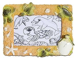 Katerina Prestige-Marco de Fotos Horizontal bebé Tortuga Eclosion, me0916