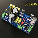 Generic GC LM1875 20Wx20W Dual Channel Stereo Power Amplifier Board DIY Kits Dual AC 18V Free Shipping