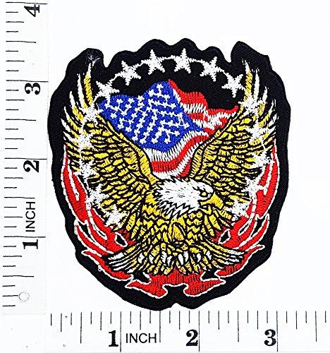 Kinder Kostüm Biker Diy (Hawk Eagle Bald USA Flagge Lady Rider Biker Baby Motorrad Patch Hand bestickt und Bügelbild Symbol Jacke T-Shirt patches aufnäher)