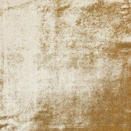 Champagne Gold glänzend Samt Vorhänge, Raffhalter, 1 Paar, champagnerfarben / goldfarben, Curtain Tie Backs (Gold Pale Lined)