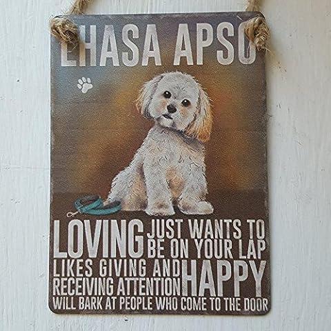 Lhassa Apso Chien Petit panneau en métal à suspendre Décoration Murale Plaque–Loving Just veut être sur vos genoux...