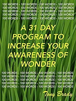 100 WORDS ON:: Increase your awareness of wonder by following a simple 31 day program by [Brady, Tony]