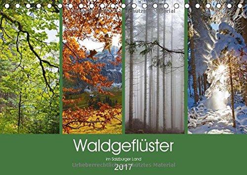 Waldgeflüster im Salzburger Land (Tischkalender 2017 DIN A5 quer): Salzburger Wälder in den 4 Jahreszeiten (Monatskalender, 14 Seiten )