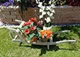 Offene Holz-Schubkarre, Gartendeko Karre zum Bepflanzen, Blumentöpfe, Pflanzkübel, Pflanzkasten, Blumenkasten, Pflanzhilfe, Pflanzcontainer, Pflanztröge, Pflanzschale, Kleine Schubkarren 60 cm HSOF-60-HELLGRAU Blumentopf, Holz, hell grau weiss weiß amazon silbergrau Pflanzgefäß, Pflanztöpfe Pflanzkübel