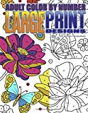Adult Color By Number Large Print Designs: Volume 14 (Premium Adult Coloring Books)