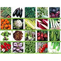 Viridis Hortus - 20 Packs of Vegetable Seeds - Tomato, Celery, Leek, Pea, Mustard Red Zest , Carrot, Chicory, Turnip etc