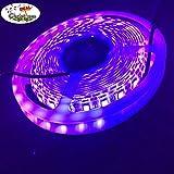Bande lumineuse UV étanche de chez Corst® 16 pieds / 5m 5050SMD, lumière noire ultraviolette, longueur d'onde de 395 à 405nm avec stérilisation pour barre de DJ décoration romantique de Noël