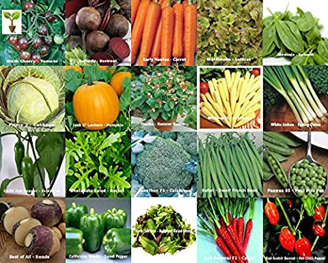 Viridis Hortus - 20 Packs of Vegetable Seeds - TOMATO,