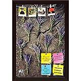 ArtzFolio Lavender Flower Bunch On Wood Printed Bulletin Board Notice Pin Board cum Dark Brown Framed Painting 12 x 17.5inch