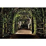 YongFoto 3x2,5m Vinyl Foto Hintergrund Garten Pergola Weg Grüner Torbogen Blätter Blumen Fotografie Leinwand Hintergrund Tapete Hochzeit Kinder Fotostudio Hintergründe Fotoshooting