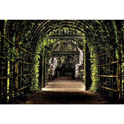 YongFoto 2,2x1,5m Polyester Foto Hintergrund Garten Pergola Weg Grüner Torbogen Blätter Blumen...