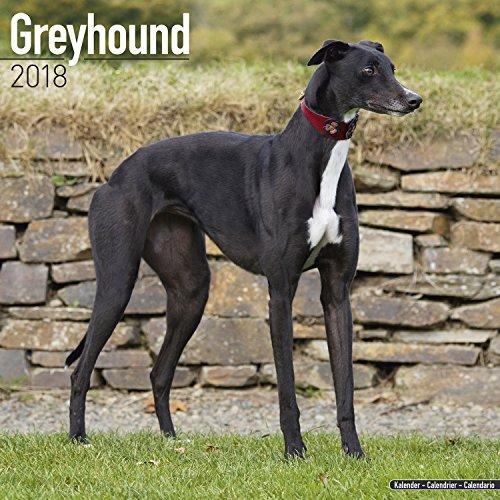 greyhound-calendar-2018