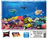 GREAT ART Fototapete - Aquarium - Wandbild Dekoration Farbenfrohe Unterwasserwelt Meeresbewohner Ozean Fische Delphin Korallen-Riff Clownfisch - Foto-Tapete Wandtapete Fotoposter (210x140 cm)
