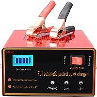Aibeau Chargeur de batterie de voiture 10 A 12 V/24 V Chargeur de batterie de voiture Chargeur de maintenance Convient…