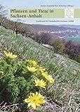 Pflanzen und Tiere in Sachsen-Anhalt: Ein Kompendium der Biodiversität