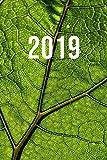 2019: Jan - Dez Wochenplaner   365 Tage Terminkalender mit Uhrzeit   1 Tag auf 1 Seite, ca. A5   Blatt Grün