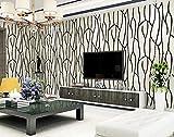 ZQ@QXFourrure rayée verticale simple chambre, salon, papier peint, papier peint, 53*1000cm, noir et blanc