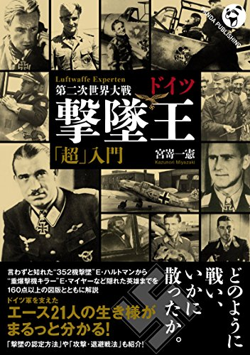 WWII Luftwaffe Experten (Panda...