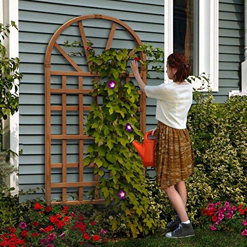 New England von va68207Savannah-Gitter–Zeder (New England Pergola)