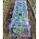 Thompson & Morgan Outdoor Garden Mini Greenhouse Growing Tunnel Plant Cloche, Protects Young Plants & Crops from Bad Weather & Reduces Impact of Pests, 2 x Greenhouse Cloches Bild 1
