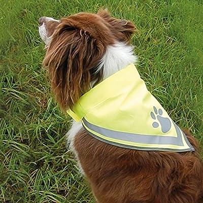 Hundehalstuch Größe L