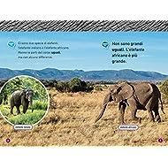 Elefanti-Livello-1-Ediz-a-colori
