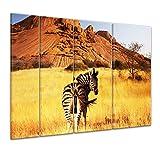 Bilderdepot24 Immagine su telaio a cunei Zebra di montagna 180x120 cm 4tlg - Già montato sul telaio, stampa su tela di cotone 100%, Stampa artistica intelaiata e pronta da appendere