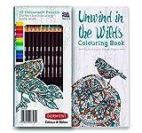 Lápices Del Colorante Para El Adulto Libros Para - Best Reviews Guide