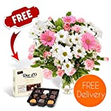 Fresh Mother's Day Flowers Delivered - Free UK Delivery - Pretty In Pink Bouquet including Germinis, Carnations and Chrysanthemums with Free Chocolates, Flower Food and Bonus Ebook Guide - Perfect For Birthdays, Anniversaries and Thank You Gifts