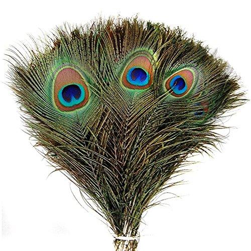 Kostüm Pfau Diy (Fletion 25-30CM Läng 50 Stück Natürliche Pfauenfedern Naturfedern Pfau Feder Deko Federn Ideal für Kostüme)