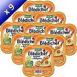 BLEDINA-BLEDICHEF Spaghetti a la Bolognaise 9x230g