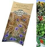 Magic Garden Seeds Saatgut Set: 'Pflanzen-Entdecker-Set für Kinder', 4 unkomplizierte Pflanzensorten