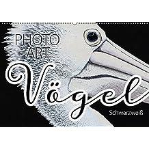Vögel Schwarzweiß Photo Art (Wandkalender 2018 DIN A2 quer): Vogelportraits stimmungsvoll umgesetzt in Schwarzweiß (Monatskalender, 14 Seiten ) ... [Kalender] [Apr 16, 2017] Sachers, Susanne