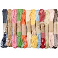 Healifty Paper Rope Paper Raffia Cord Craft Twine DIY Colorful Twisted Craft String Strap (Mix Color) 10M/12 Pcs